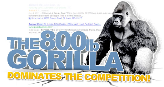 The 800 lb Gorilla